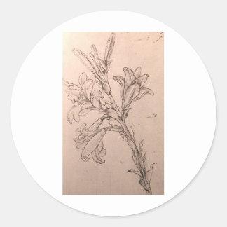 Study of lilies classic round sticker