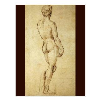 Study of Michelangelo's David Statue by Raphael Postcard