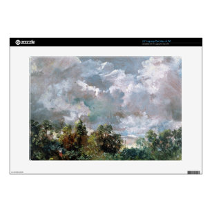 bc6223018 Study of Sky and Trees (oil on canvas) Decal For 15