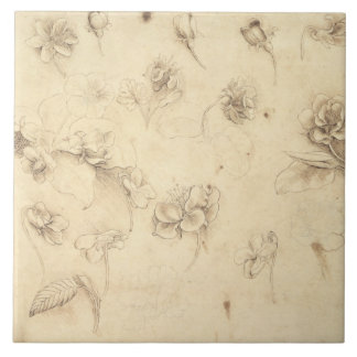 Study of the Flowers of Grass-like Plants (Briza M Ceramic Tile