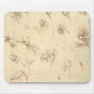 Study of the Flowers of Grass-like Plants (Briza M Mouse Pad