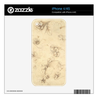 Study of the Flowers of Grass-like Plants (Briza M Skins For The iPhone 4S