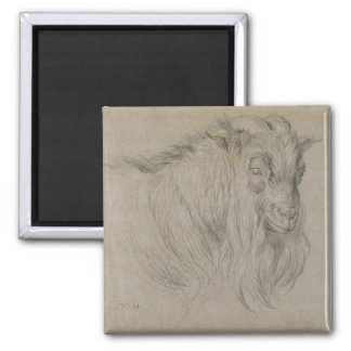 Study of the Head of a Ram (black, sanguine & whit Magnet