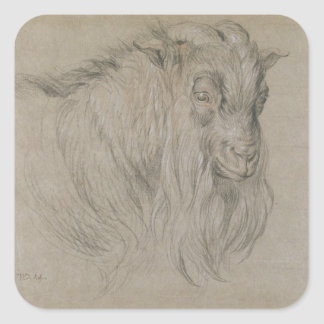 Study of the Head of a Ram (black, sanguine & whit Square Sticker
