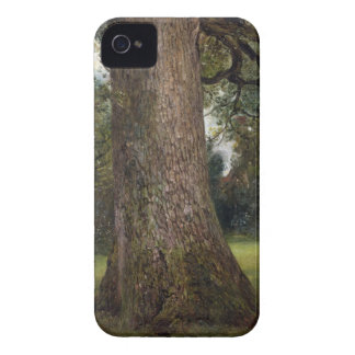 Study of the Trunk of an Elm Tree, c.1821 (oil on iPhone 4 Case