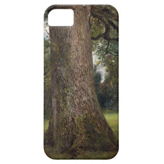 Study of the Trunk of an Elm Tree, c.1821 (oil on iPhone SE/5/5s Case