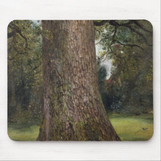 Study of the Trunk of an Elm Tree, c.1821 (oil on Mouse Pad