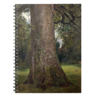Study of the Trunk of an Elm Tree, c.1821 (oil on Spiral Note Books