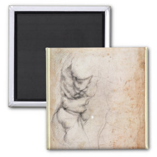 Study of torso and buttock magnet