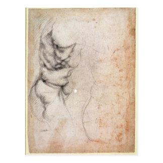Study of torso and buttock postcard