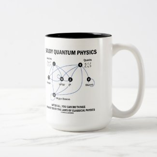 Study Quantum Physics After All You Can Do Things Mugs