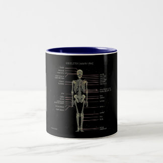Study Them Bones... Two-Tone Coffee Mug