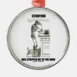 Studying Has Stripped Me To The Bone (skeleton) Metal Ornament at Zazzle