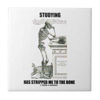 Studying Has Stripped Me To The Bone (Skeleton) Ceramic Tiles