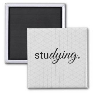 Studying Magnet