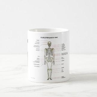StudyThem Bones... Classic White Coffee Mug