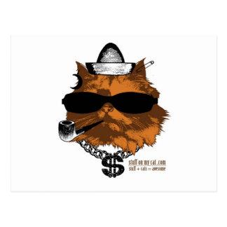 Stuff on my Cat - 2 kewl Postcard