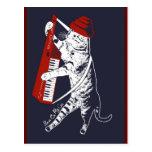 stuff on my cat - keytar post card