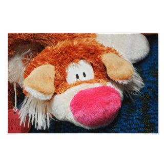 Stuffed toy photo print