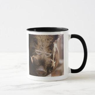 Stuffed Wild Boar Wearing Glasses Outside Mug
