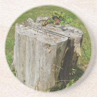 Stump Coaster
