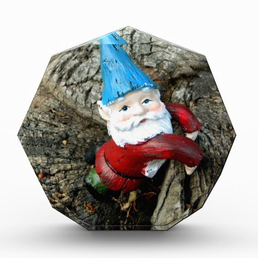 Stumped Gnome Awards