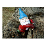 Stumped Gnome Post Cards