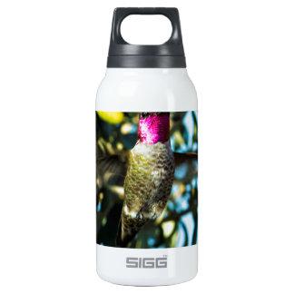Stunner Hummer Hummingbird Thermos Water Bottle