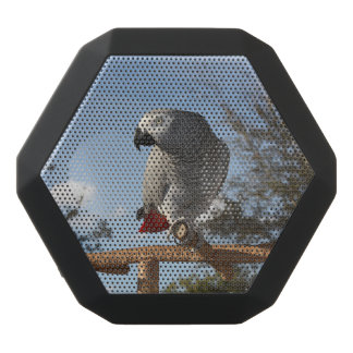 Stunning African Grey Parrot Black Bluetooth Speaker