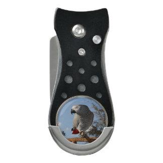 Stunning African Grey Parrot Divot Tool