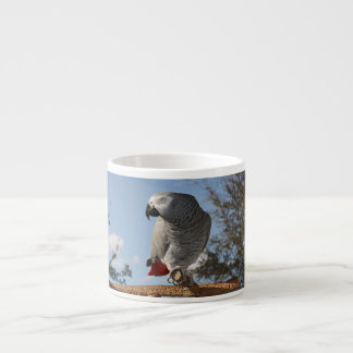 Stunning African Grey Parrot Espresso Cup