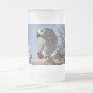 Stunning African Grey Parrot Frosted Glass Beer Mug