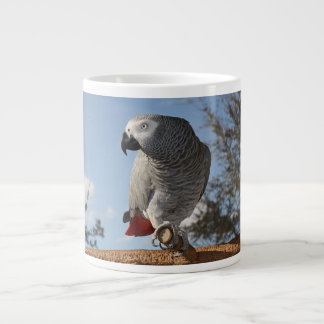Stunning African Grey Parrot Giant Coffee Mug
