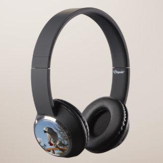 Stunning African Grey Parrot Headphones