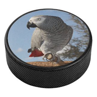 Stunning African Grey Parrot Hockey Puck