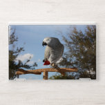 """Stunning African Grey Parrot HP Laptop Skin<br><div class=""""desc"""">Pretty African Grey on a tree stand with her pretty gray feathers and red tail watching her surroundings outdoors against the blue sky and oak trees.</div>"""