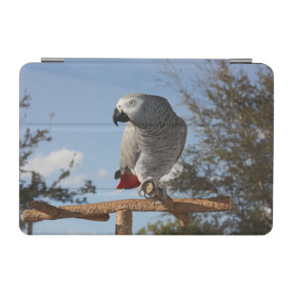 Stunning African Grey Parrot iPad Mini Cover