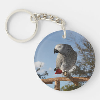 Stunning African Grey Parrot Keychain