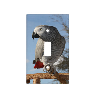 Stunning African Grey Parrot Light Switch Cover