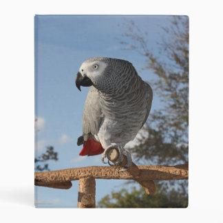 Stunning African Grey Parrot Mini Binder