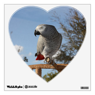 Stunning African Grey Parrot Wall Decal