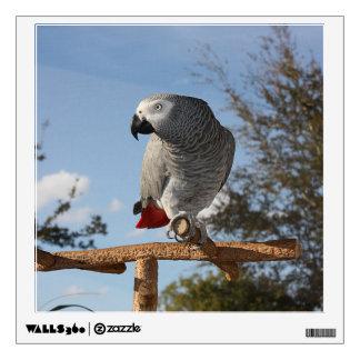 Stunning African Grey Parrot Wall Sticker