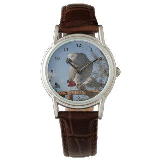 Stunning African Grey Parrot Watch