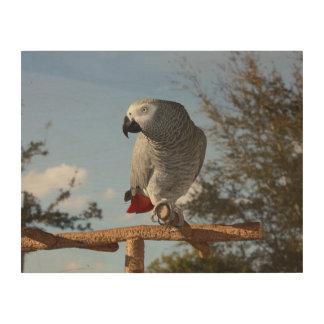 Stunning African Grey Parrot Wood Wall Art