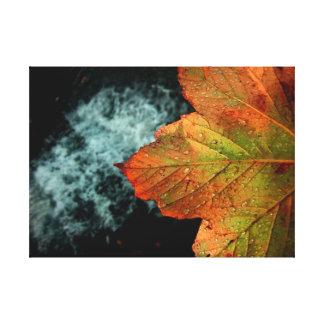 Stunning Autumn Leaf & Waterfall Vivid Print