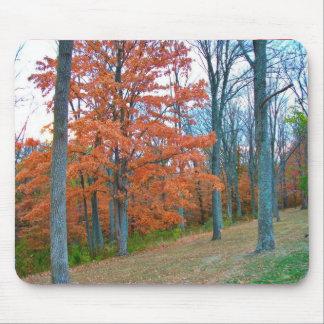 Stunning Autumn Scenery Mouse Pad