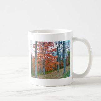 Stunning Autumn Scenery Mug