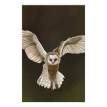 Stunning Barn Owl Hand Drawn Artwork Stationery