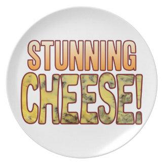 Stunning Blue Cheese Melamine Plate