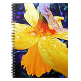 Stunning Daffodil with Raindrops Spiral Notebook